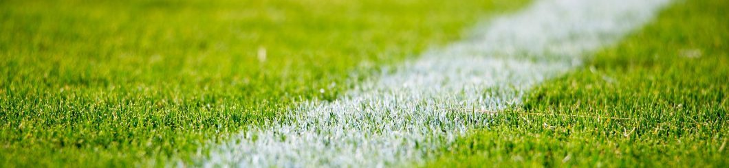 Cropped Cropped Grass 2616911 1920 Jpg Football Absurdity