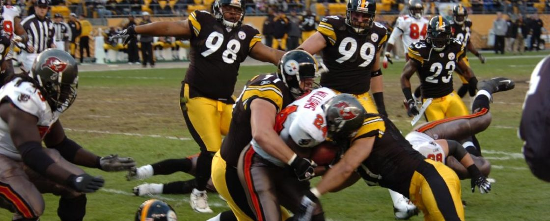 steelers defense daily fantasy football