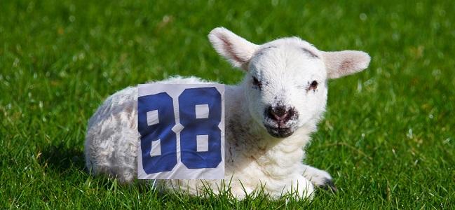 CeeDee Lamb Dallas Cowboys
