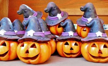 Pumpkins with spooky witch hats